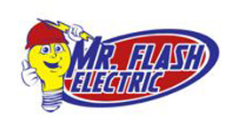 Mr. Flash Electric